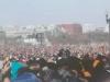 crowds003